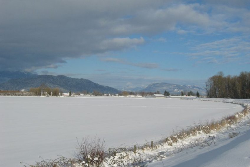 Winter scene from the Trans Canada trail | Chilliwack, BC