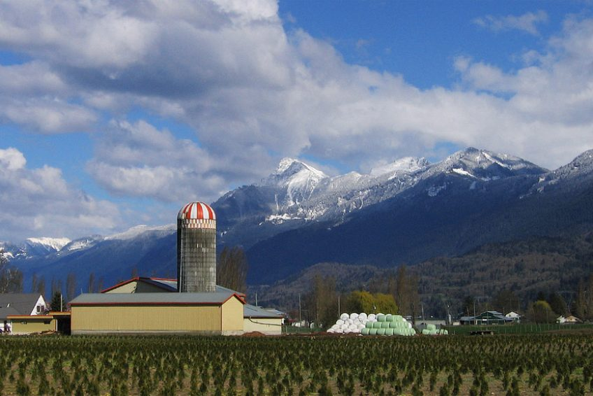 Farm with Mount Cheam in the background | Credit: Ian Meissner CC BY 2.0 Wikimedia | Chilliwack, BC